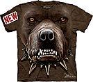 American Pit Bull Terrier - Feroz