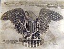 A Águia americana humana - Mole