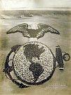 Emblema vivo da Marinha dos Estados Unidos - Mole