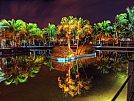 Tropic - foto de Paul Bica