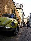 Beetle_by_Kernunos.jpg
