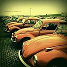 Let__s_beetle_again_by_moonchild_87.jpg