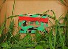 Criatividade com fita cassete por Benoit Jammes [tape4]