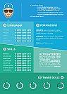 Modelos de currículos criativos usando infográficos - 14