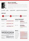 Modelos de currículos criativos usando infográficos - 06